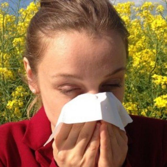 Consigli utili per liberare la casa dagli allergeni