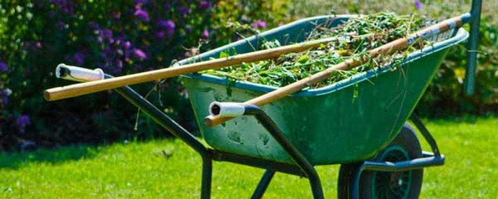Pulizia giardino