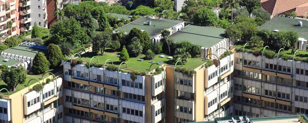 Tetti giardino: sono belli e ecosostenibili