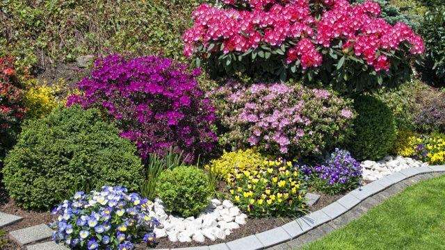 Tessin Garden Sagl